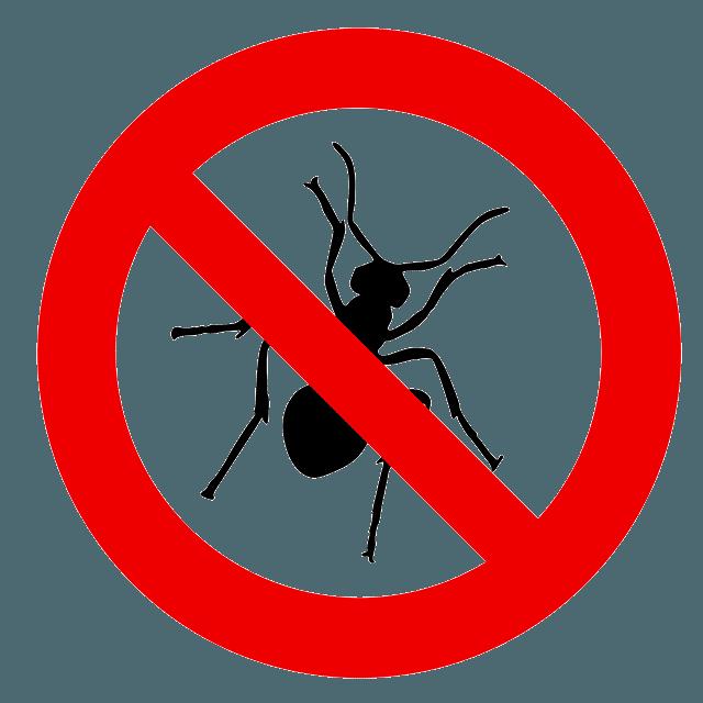 Чистый дом спокойная жизнь без насекомых